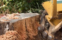 Close up of a stump grinder in action